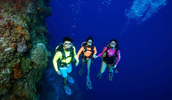 Diving in the Caymans